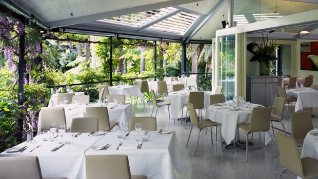 Botanic Gardens Restaurant re Trippas White Promo, July 2009_620x349