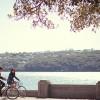 Bike_620