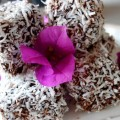 Raw food lamington