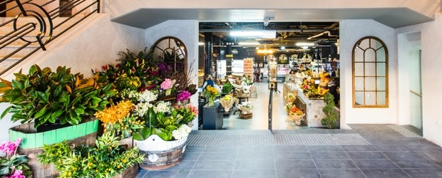 Back in full colour at The Majestic Gourmet Grocers